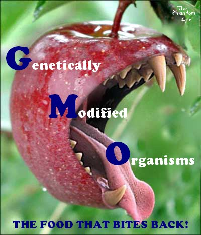GMO_002.jpg